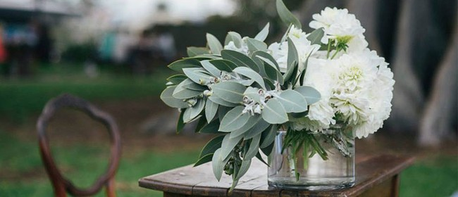 Hawke's Bay Pop-up Wedding