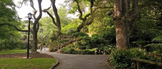 Guided Walk: A Ramble Through the Garden