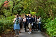 Guided Walk: Plants and The Wider World