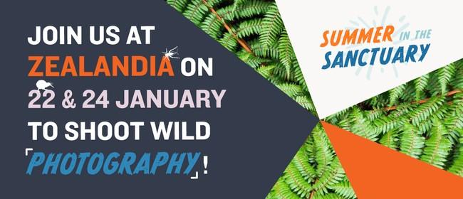 Wildlife Photography Workshops