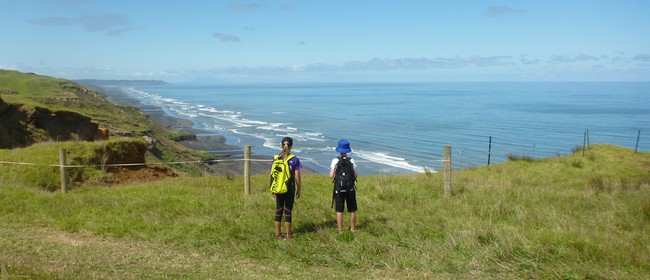 Waiuku Rotary Sunset Coast Walk