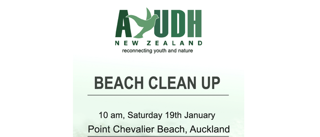 AYUDH Point Chevalier Beach Clean Up