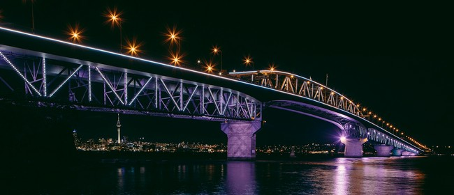 Vector Lights On Auckland Anniversary Weekend