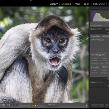 Lightroom Editing - Getting Started