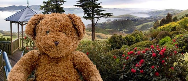 Teddy Bears Picnic (School Holidays)