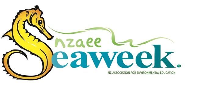 Seaweek - KINZ clean-up Maraetai Beach