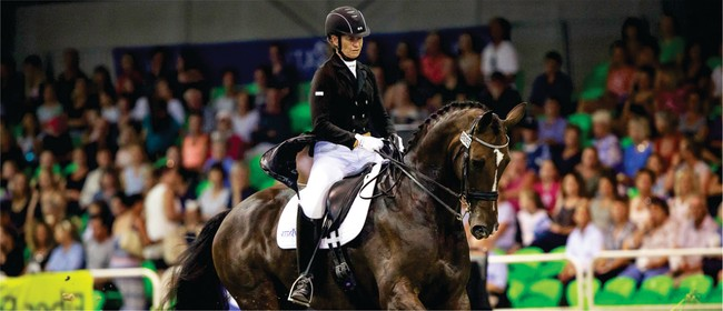 Dressage Musical Spectacular