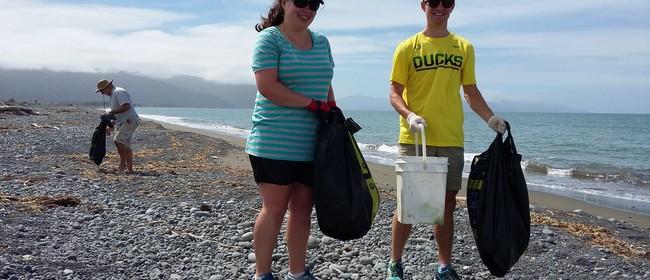 Massive Marlborough Clean-Up: Rarangi (Seaweek)