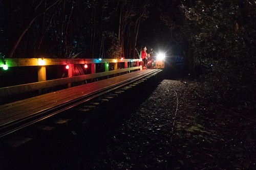 Lights of Spring Night Trains