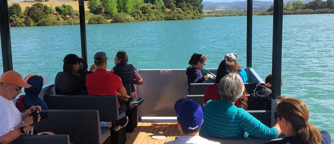 Seaweek – Matakana River Tours Seaweek Special