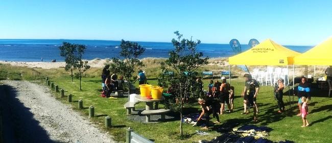 Seaweek – Community Snorkel Day