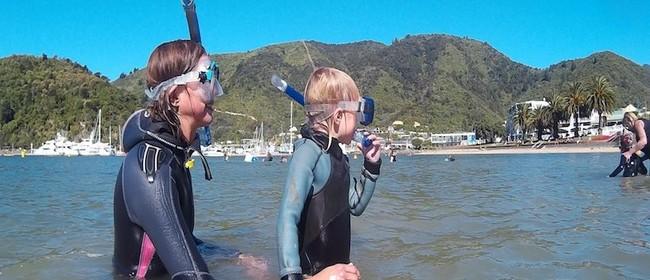 Seaweek - Snorkel Long Island, Queen Charlotte Sound