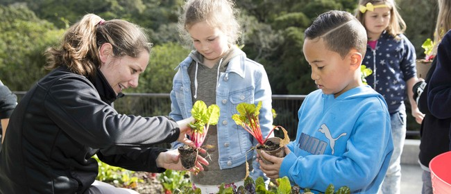 Discovery Garden Familiarisation Tour for Teachers: CANCELLED