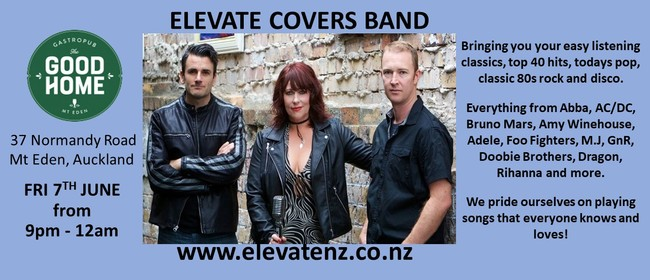 Elevate Trio Covers Band