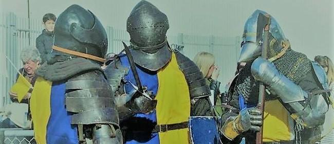 Tauranga Titans Medieval Combat Open Day