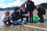 Seaweek - Seashore Science with Marine Metre Squared