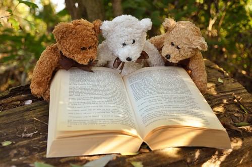 Awapuni Teddy Bears Picnic