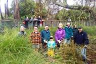 Riverlea Environment Society Inc - Restoration Project