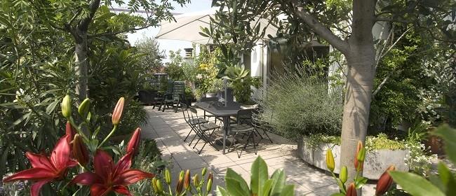 Principles of Small Garden Design