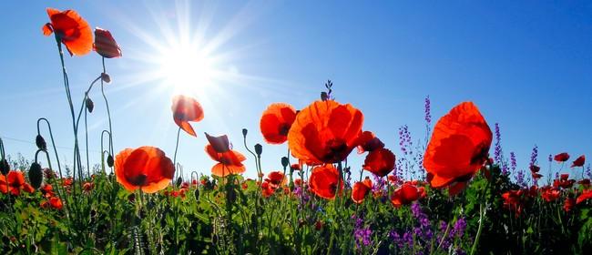 ANZAC Day Service - Marlborough Sounds