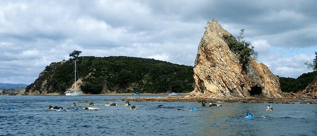 Seaweek - Rotoroa Snorkel Day