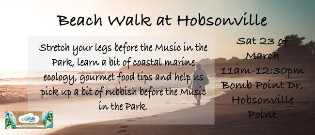 Beach Walk at Hobsonville