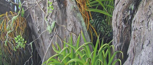 Open Studio's Whanganui - Pauline Allomes