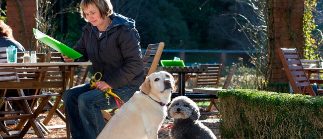 Responsible Dog Owner Training Course