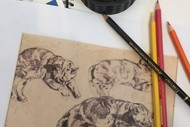Developing Drawing Techniques (For Children)