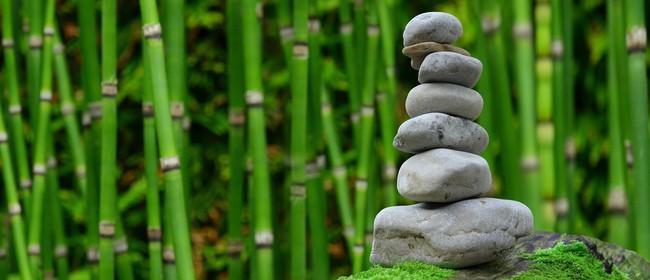 Beginners Meditation - 4 Week Block