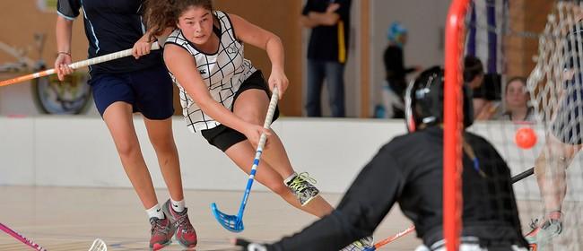 Floorball (Indoor Hockey) Adult/Family League