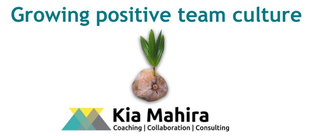 Growing Positive Team Culture - 4 Hour Workshop
