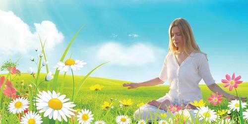 Falun Dafa Meditation