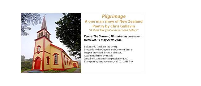 Pilgrimage: 20th Century NZ Poetry