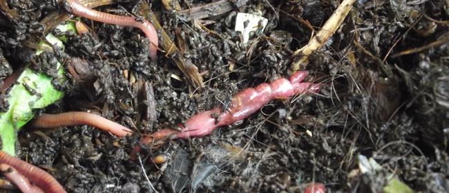 Worm Farming Workshop