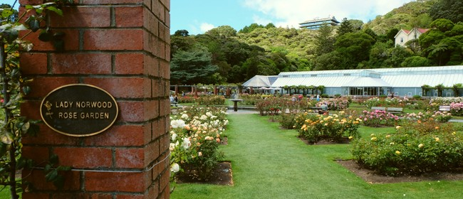 Guided Walk: The Rose Garden and Its Amazing Story
