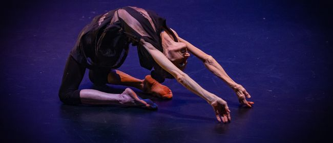 Dance Classes - Contemporary/Yoga