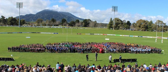 NZ Junior Rugby Festival