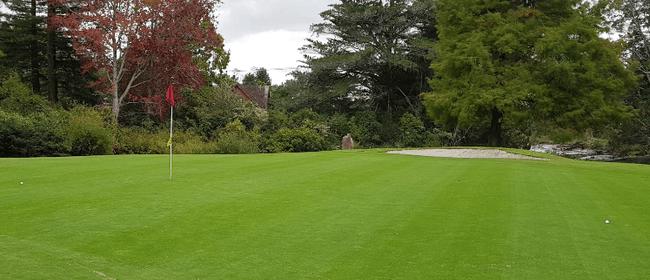 Ladies Day Trip to Whitford Park Golf