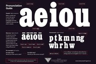 Beginners Te Reo: Continued Learning and Practise