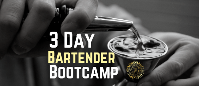 3 Day Bartender Bootcamp - Short Cocktail Course