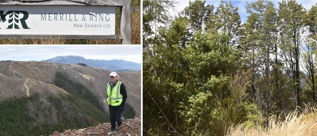 Forestry Field Day Cawthron Marlborough Environment Awards