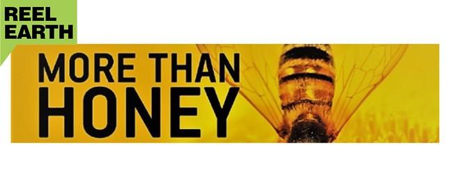 Reel Earth Screening - More Than Honey
