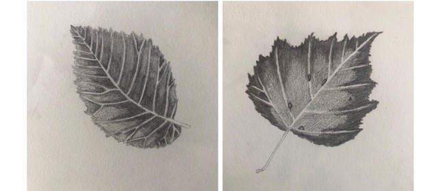 Observational Drawing of Autumn Leaves