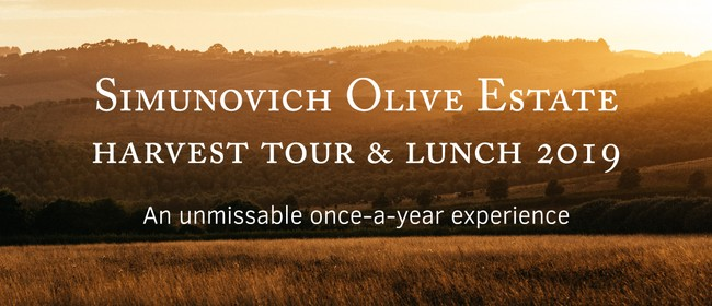 Simunovich Olive Estate Harvest Tour & Lunch