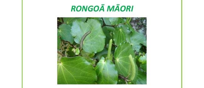 Rongoā Māori