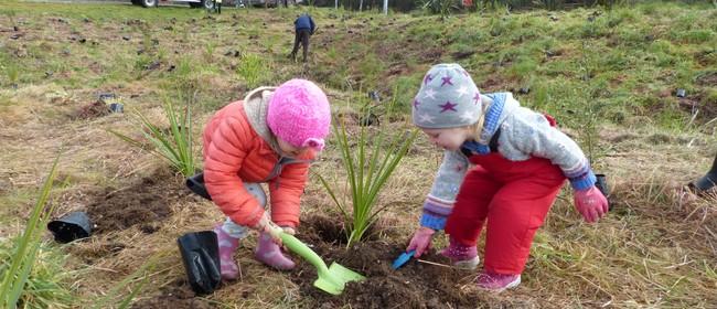 Greening Taupo Community Arbor Day Planting