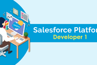 Salesforce PD1 Certification Training Course