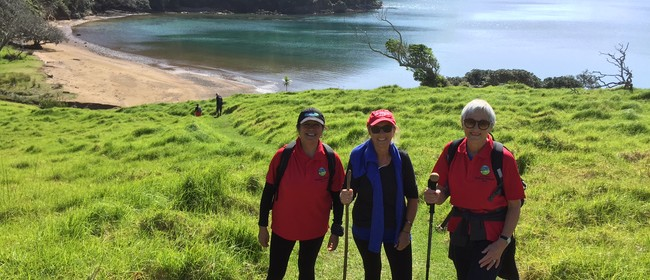 Pukehuia Magic and Whangamumu Whaling Walk