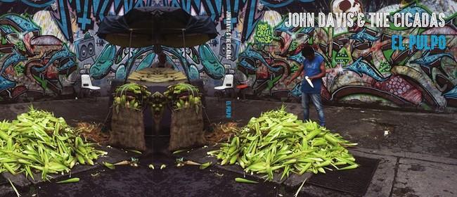 John Davis & The Cicadas (ex-Folk Implosion)